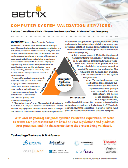 Computer Systems Validation Services